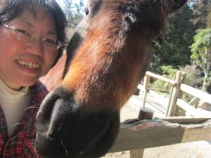 馬の鼻 陸と私